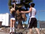 Un partidito de baloncesto con Alexis Texas