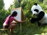 Follada en el bosque por un salvaje oso panda